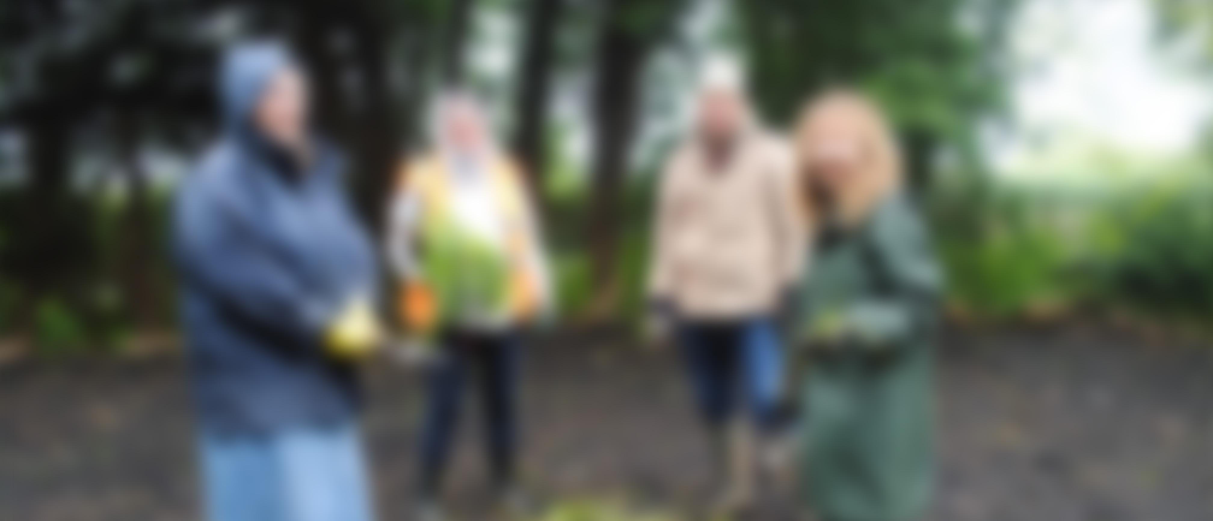 Planting up of Bog Garden
